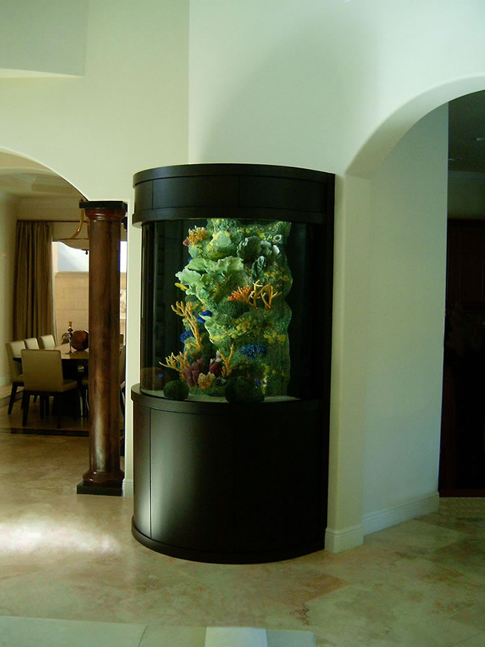 Attractive Corner Aquarium