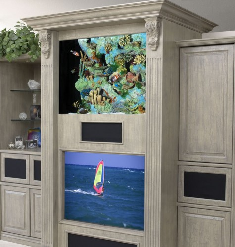Wall Unit Aquarium