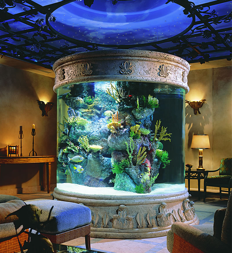 Beautiful home aquarium interior home design Beautiful aquariums for home