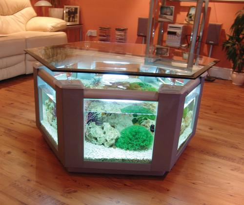 Aquariums different types of aquariums for Unique center table designs