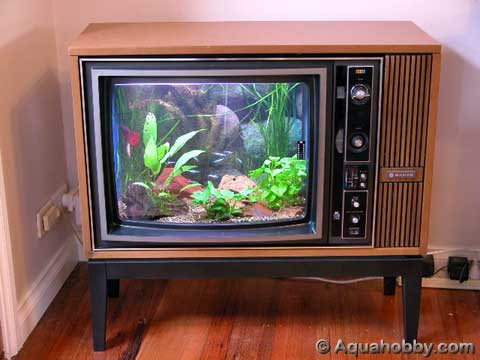 TV Set Aquarium