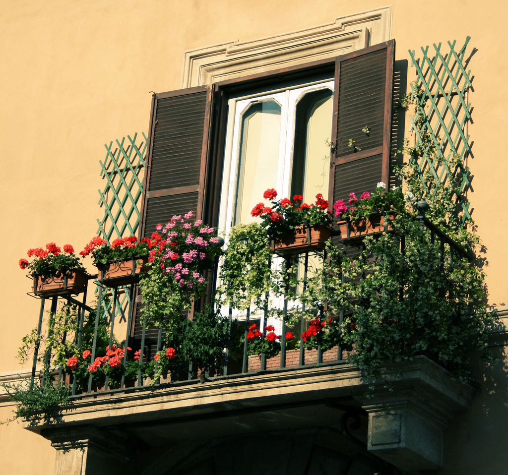 Flowers on balconies for Apartment design with terrace
