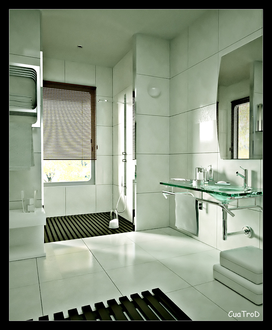 Bathroom design ideas for House bathroom design