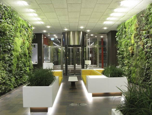 Indoor garden for Garden house office