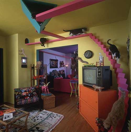 Cat Room Design Ideas cat room ideas Here Is Another Home That Is Really Considerate To Its Resident Cats Includes Open Air Catwalks Cat Doors Separate Bathrooms And A Playful Nooks