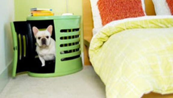 Spaces for Pets At Home