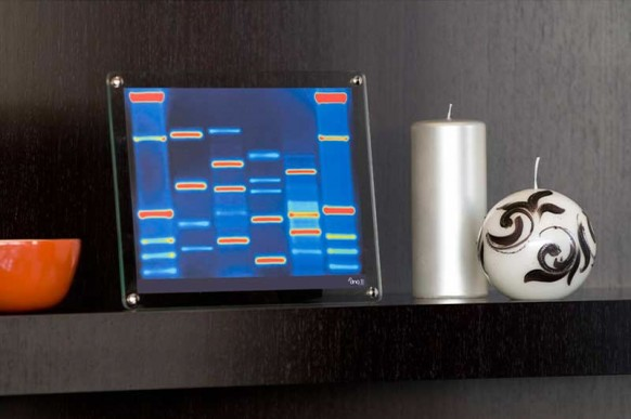 Mini DNA shelf