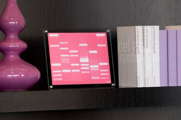mini DNA book shelf