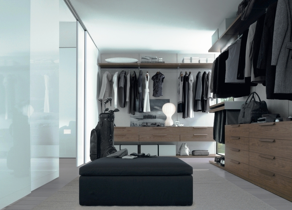 Bedroom closets and wardrobes for Bedroom walk in closet designs