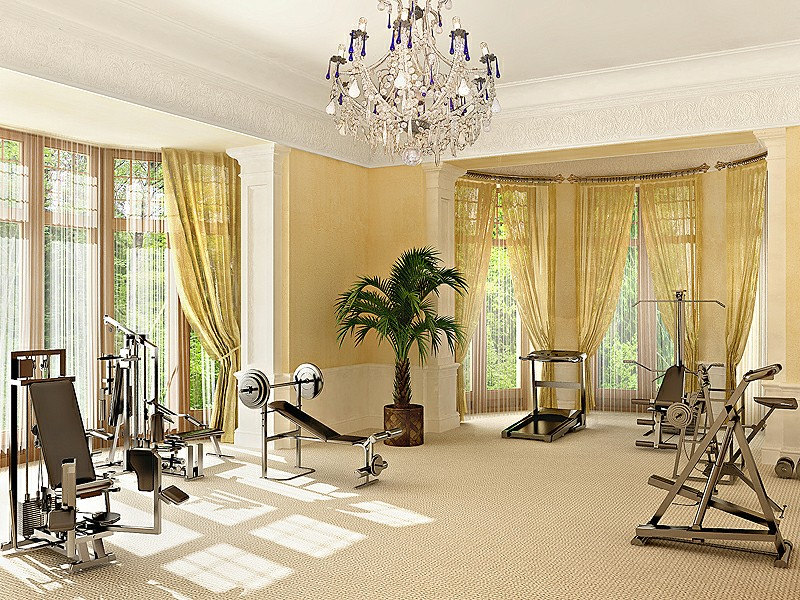 Home Gym Design Tips And Pictures - Home gym design ideas