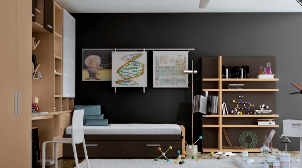 Rockstar themed for tween boys bedroom ideas