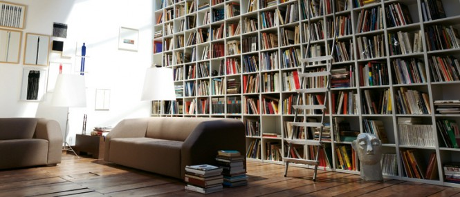 bookshelf and lounge