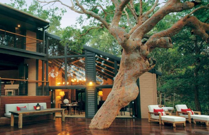 sydney beachhouse tree deck