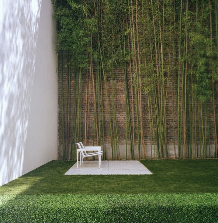 Urban garden with bamboo interior design ideas Indoor outdoor interior design