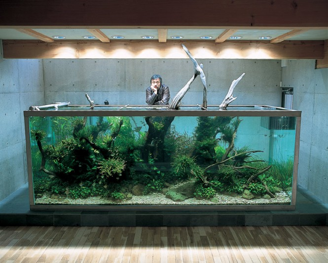 Mr Amano introduced the Japanese nature style during the 1980s, where a planted aquarium would aim to mimic a naturally growing scene and is influenced by Japanese gardening concept Wabi Sabi. The implementation of schools of fish is also favored in this genre, to obtain a gentle balance of life and nature.
