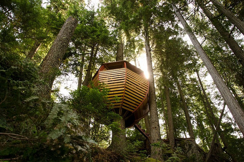Adult Treehouse Interior Design Ideas