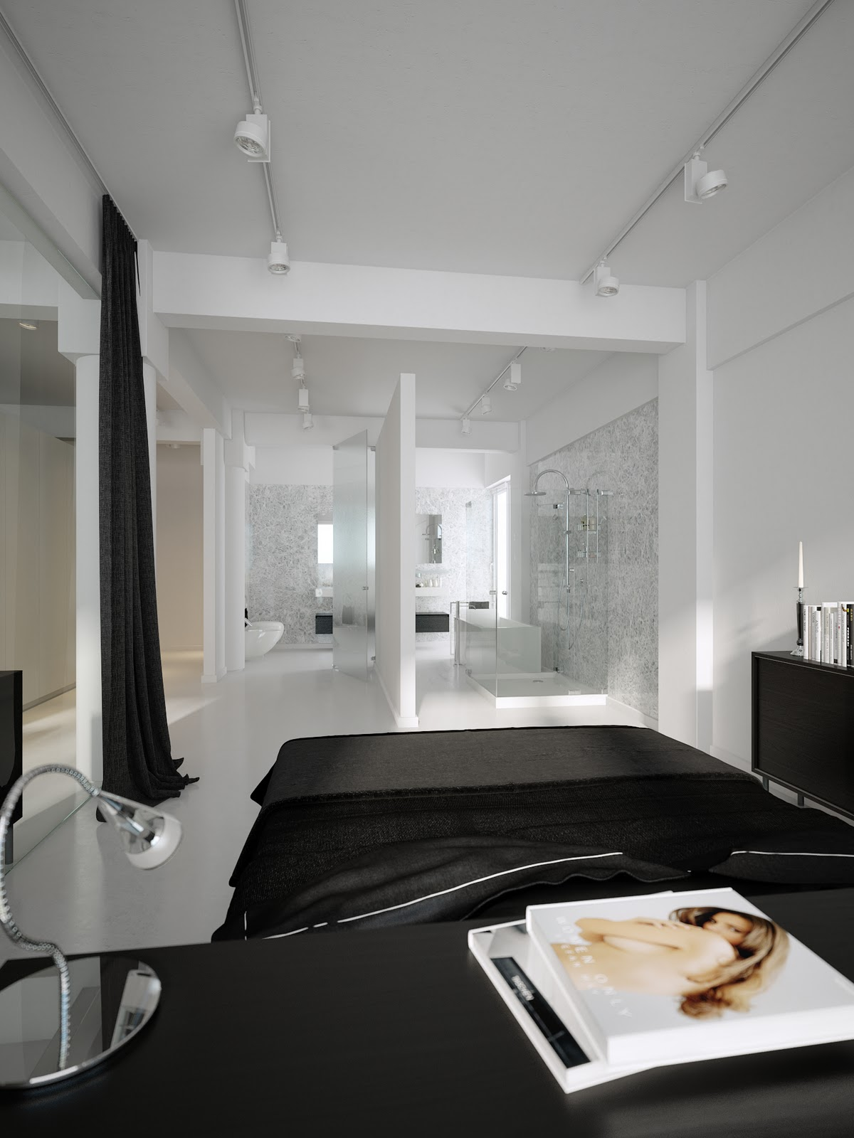 Modern minimalist black and white lofts for Bedroom and bathroom