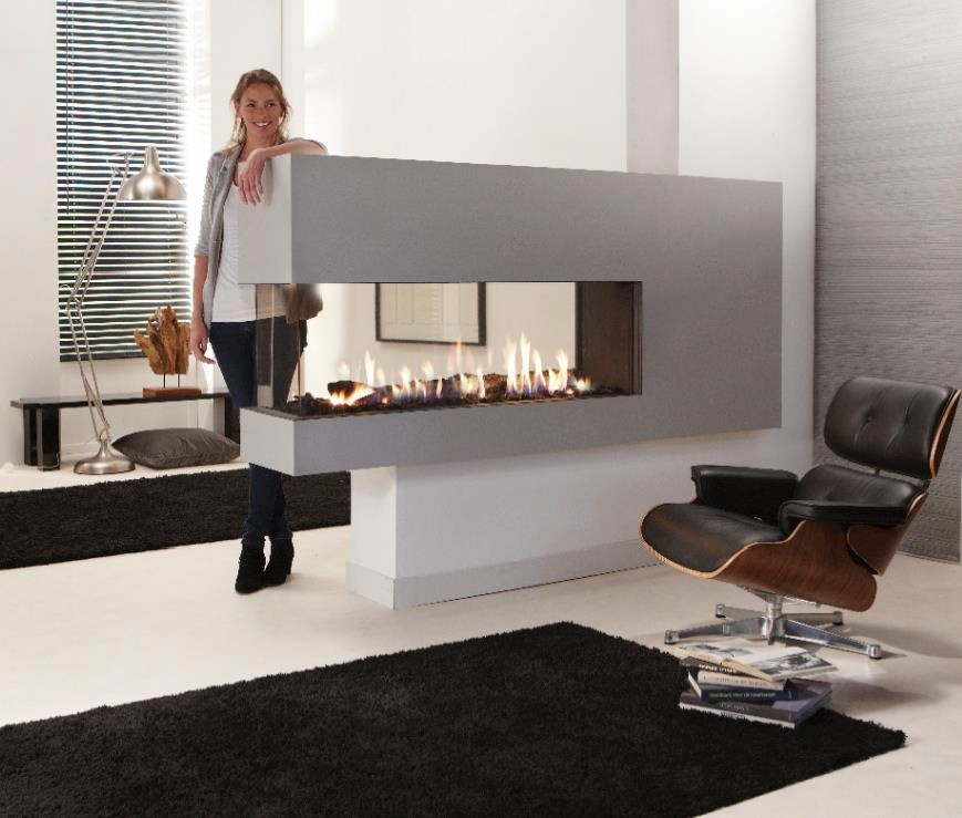 Contemporary Gas Fire Interior Design Ideas