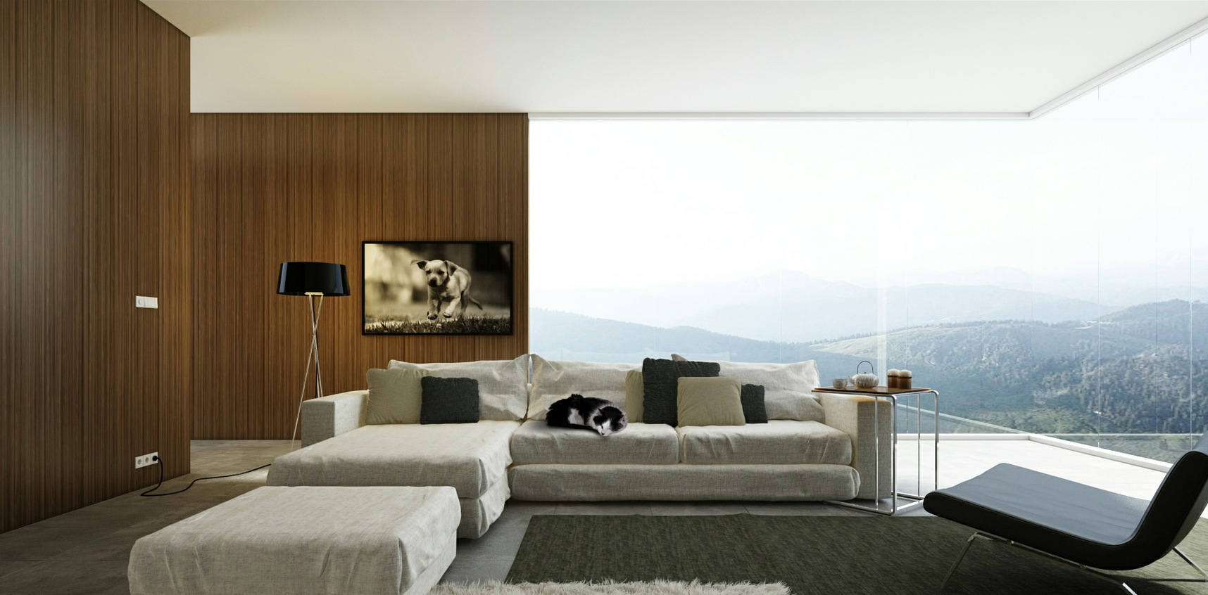 Living rooms with great views for White wall living room ideas