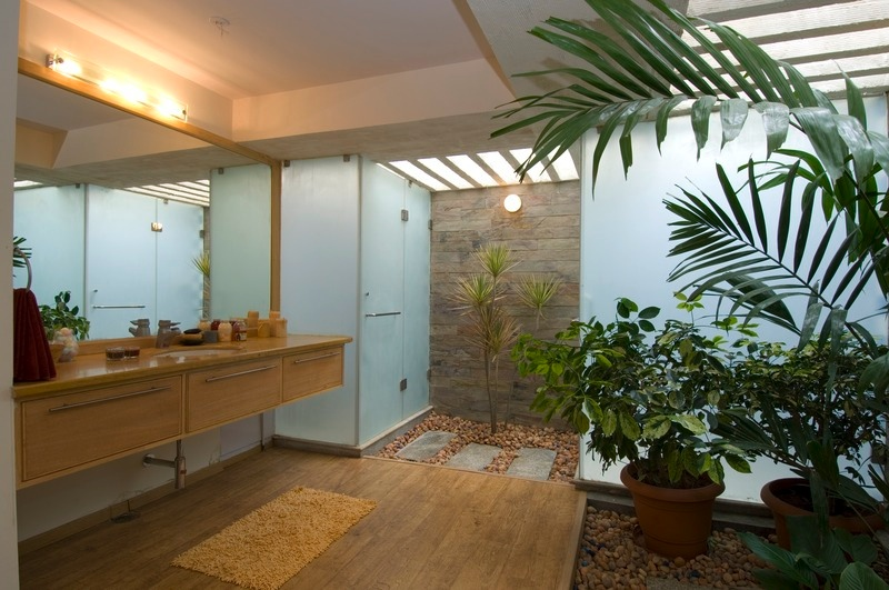 Interior courtyard bathroom interior design ideas for Interior courtyard design ideas