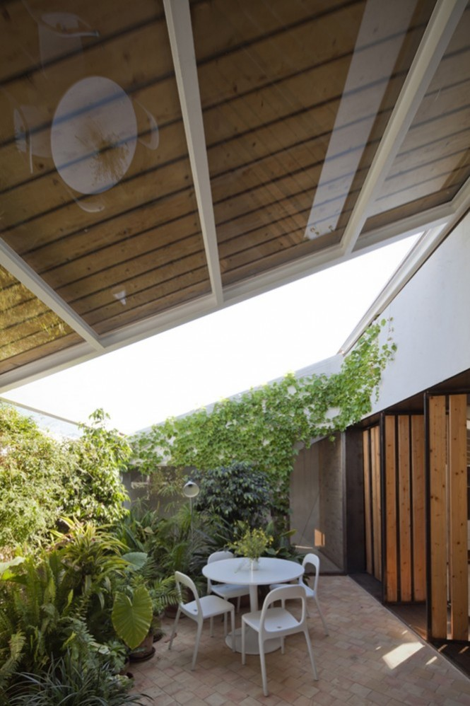 Surrounded by nature at casa selva for Interior courtyard designs