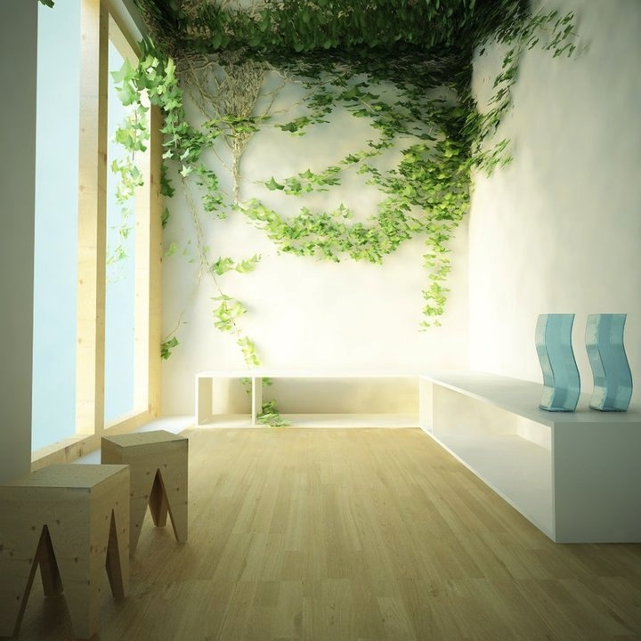 10 unusual wall art ideas for Indoor nature design challenge
