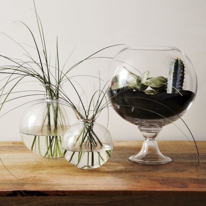 Dinky plant arrangements in shiny glass vessels have a cute sort of magic about them, like part of the earth has been shrunken down especially to fit neatly on your shelf.