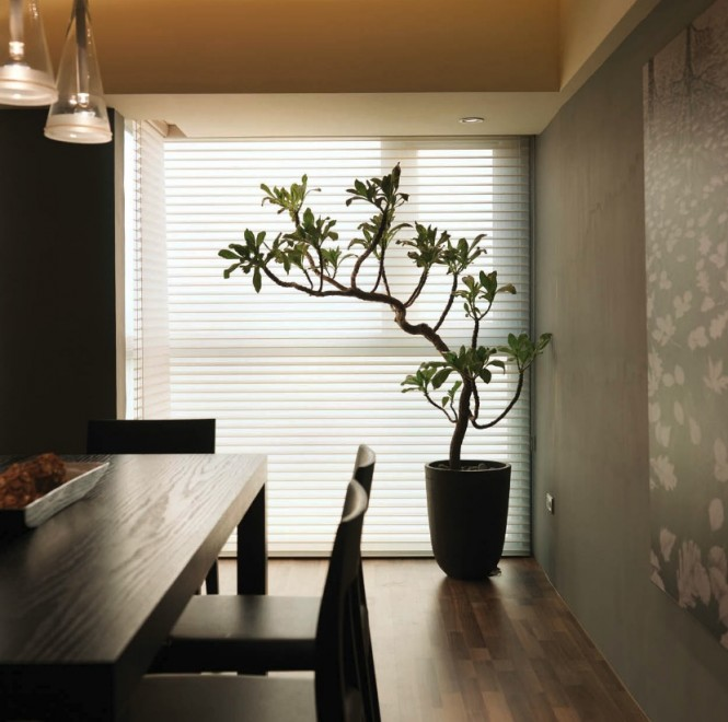 The placement of the tropical plant near the window is not only practical but adds a sense of whimsy to this clean lined dining space.
