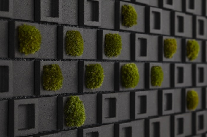 Living wall tiles such as these not only bring a natural element to the kitchen they make the environment healthier too.