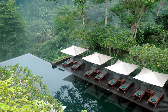 This lagoon pool's infinity edge appears to drop off into the vast jungle below.