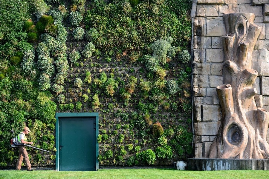 Vertical gardens for Vertical garden design