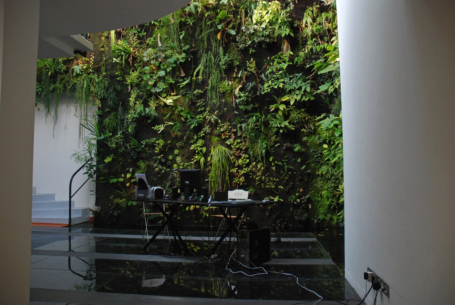 customizable and vertical self garden indoor en plant black inicio days watering