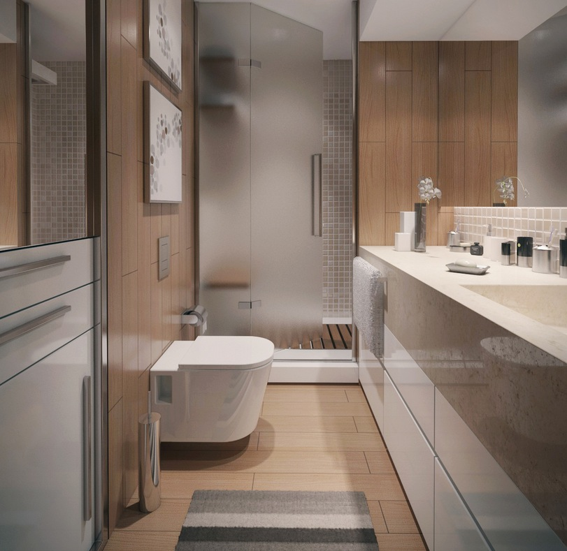 Contemporary apartment bathroom interior design ideas for Modern style bathroom designs