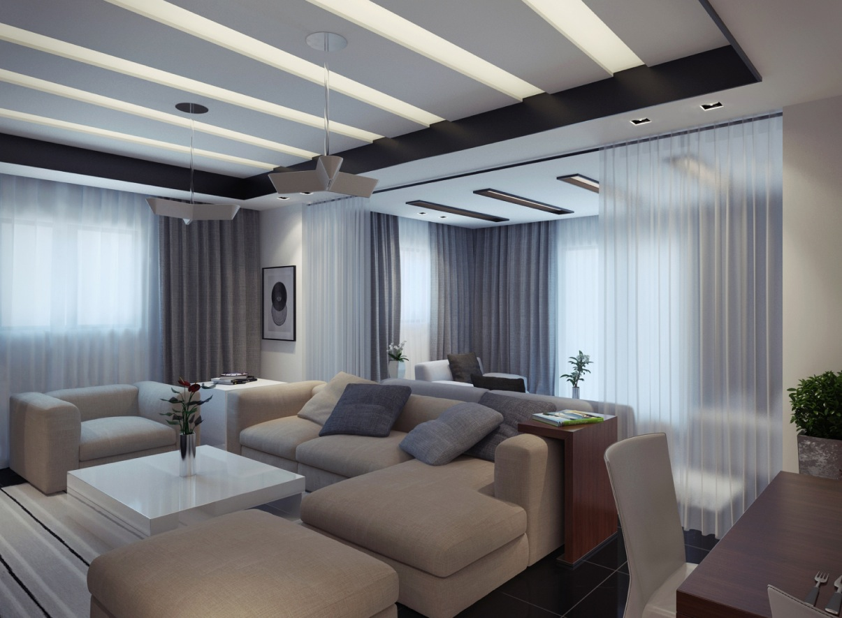 contemporary apartment living room