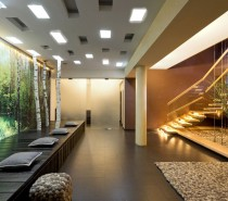 floating stairwell with pillars and glass panels pebble look rug and furnishings and tree trunk feature wall