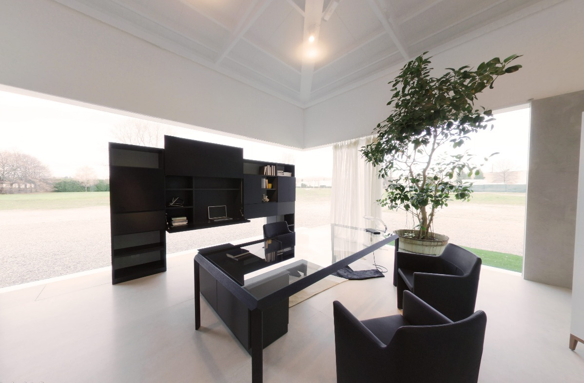 Modern Black Office Space With Juvenille Tree In Pot And