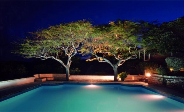 tree shaded pool by night