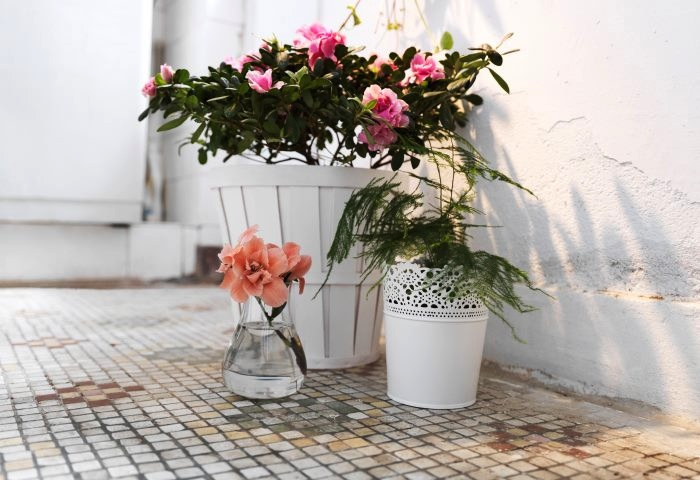 White Vintage Floral Arrangement And Pot Plants Interior