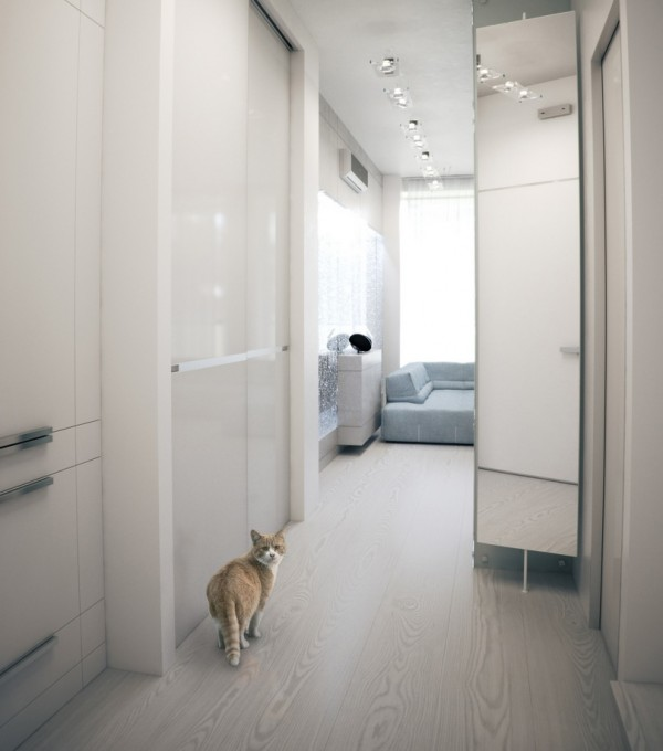 Alexander Lysak Visualization- white mirrored hall to living room cat