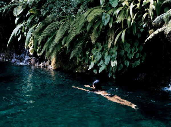 Como Shambhala Estate Bali- fresh water creek swimming under hanging foliage