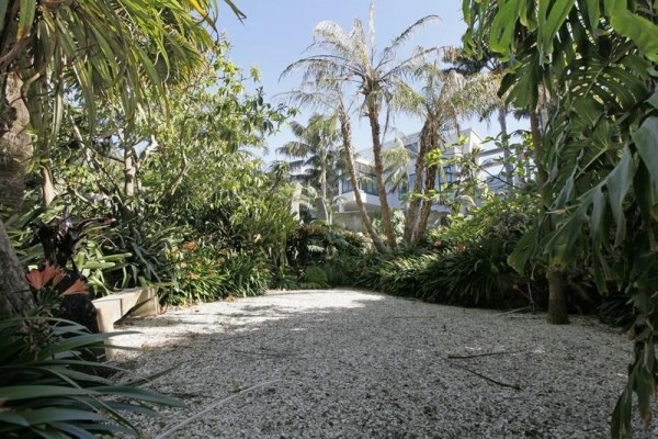Sotheby's Auckland House- pebble garden surrounded by lush tropical plants
