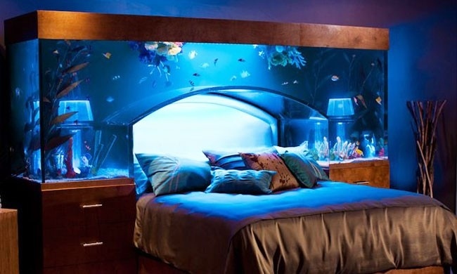 Ultra Modern Bedroom Under Water Design Modern Diy Art  : The aquarium bedroom from scribblingmypoetry.blogspot.com size 650 x 390 jpeg 90kB