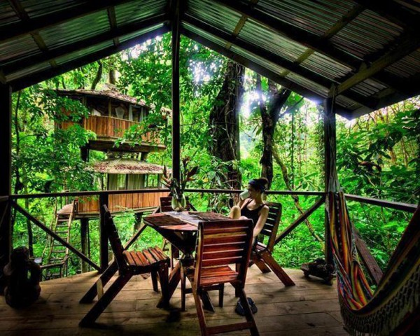 A covered deck is furnished with dining table and chairs providing a place for conversation or time alone of a cup of coffee. Another of the connected treehouses can be seen in the background.