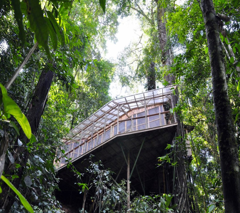 Sustainable treehouse community in costa rican jungle for Jungle house costa rica