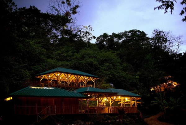 A nighttime view of the treehouse community shows several of the houses and how they are situated in relation to one another.