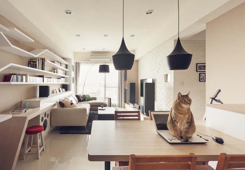 The perfect 39 cat house 39 for Clean modern living room