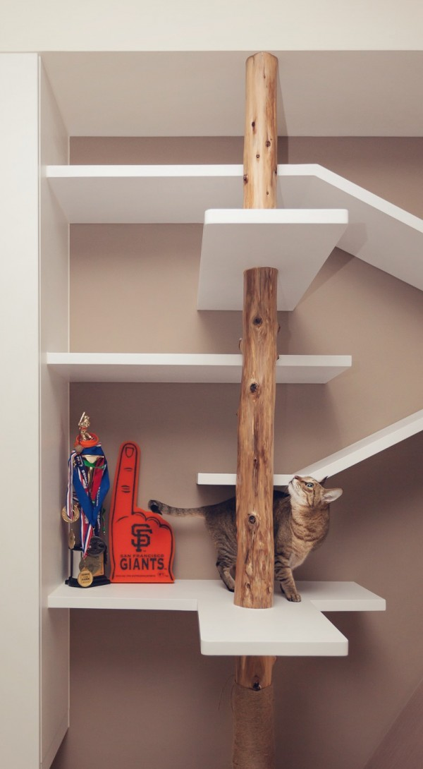 A cat's fantasy play land was built into the bookshelves offering the feline a scratching post and multilevel shelves and platforms to run and climb on.