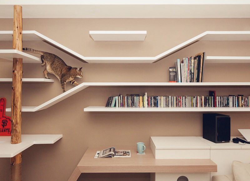 The perfect 39cat house39 for House shelves designs
