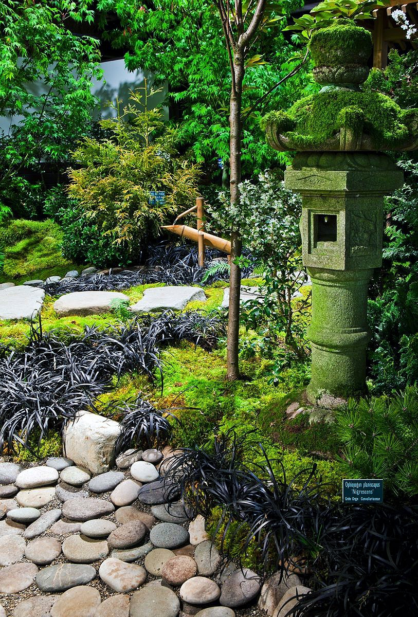 Japanese zen gardens for Beautiful small home gardens