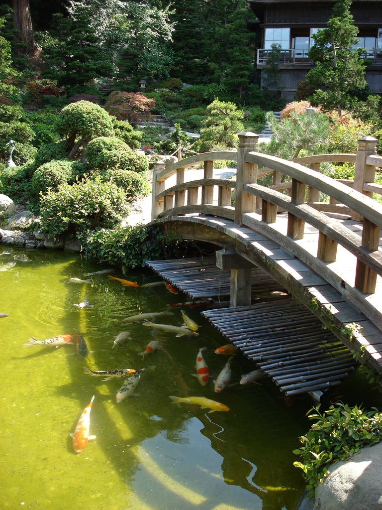 Japanese zen gardens for Fish pond bridges